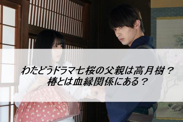 わたどうドラマ七桜の父親は高月樹?椿とは血縁関係にある?